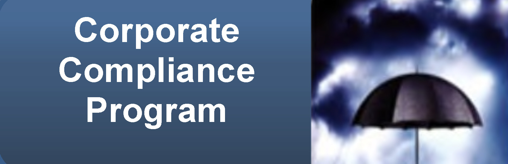corporate compliance report Compliance guidance corporate integrity agreements  semiannual report  oig welcomes ideas for new compliance resources that would be helpful to the health.